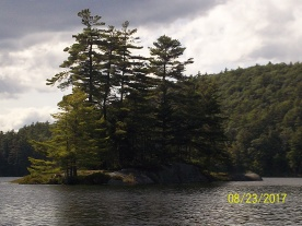 an island in Rock Pond